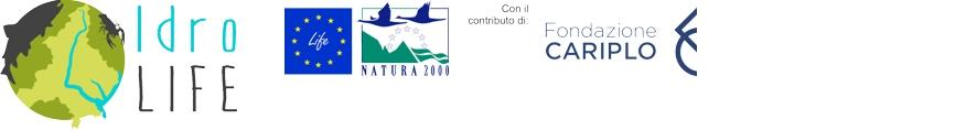 IdroLIFE Logo
