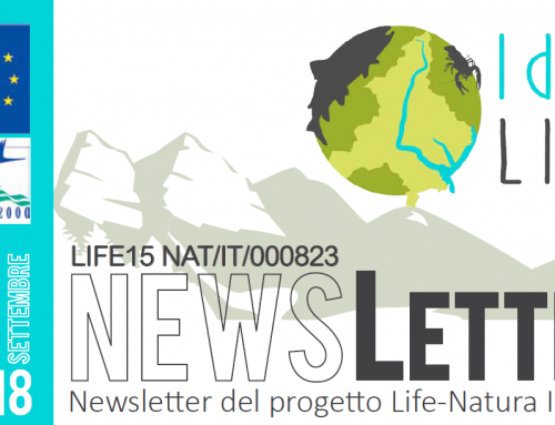 Newsletter – settembre 2018