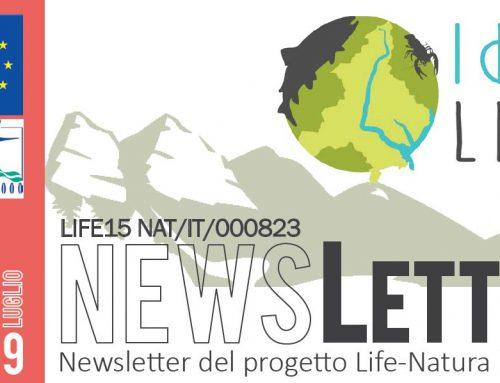 Newsletter luglio 2019